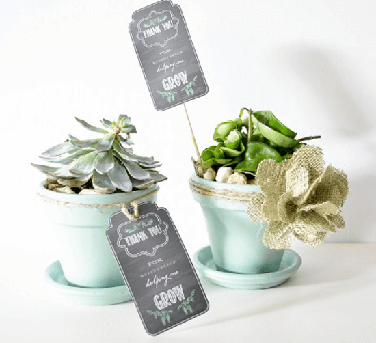 Teacher Appreciation Gift - Printable Plant Tag
