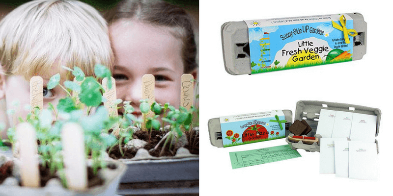 Best Non-Toy Gift Guide for Kids - Grow your own garden kit