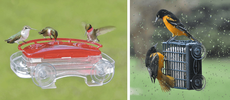 Best Gifts For Families | Suction Cup Window Bird Feeders