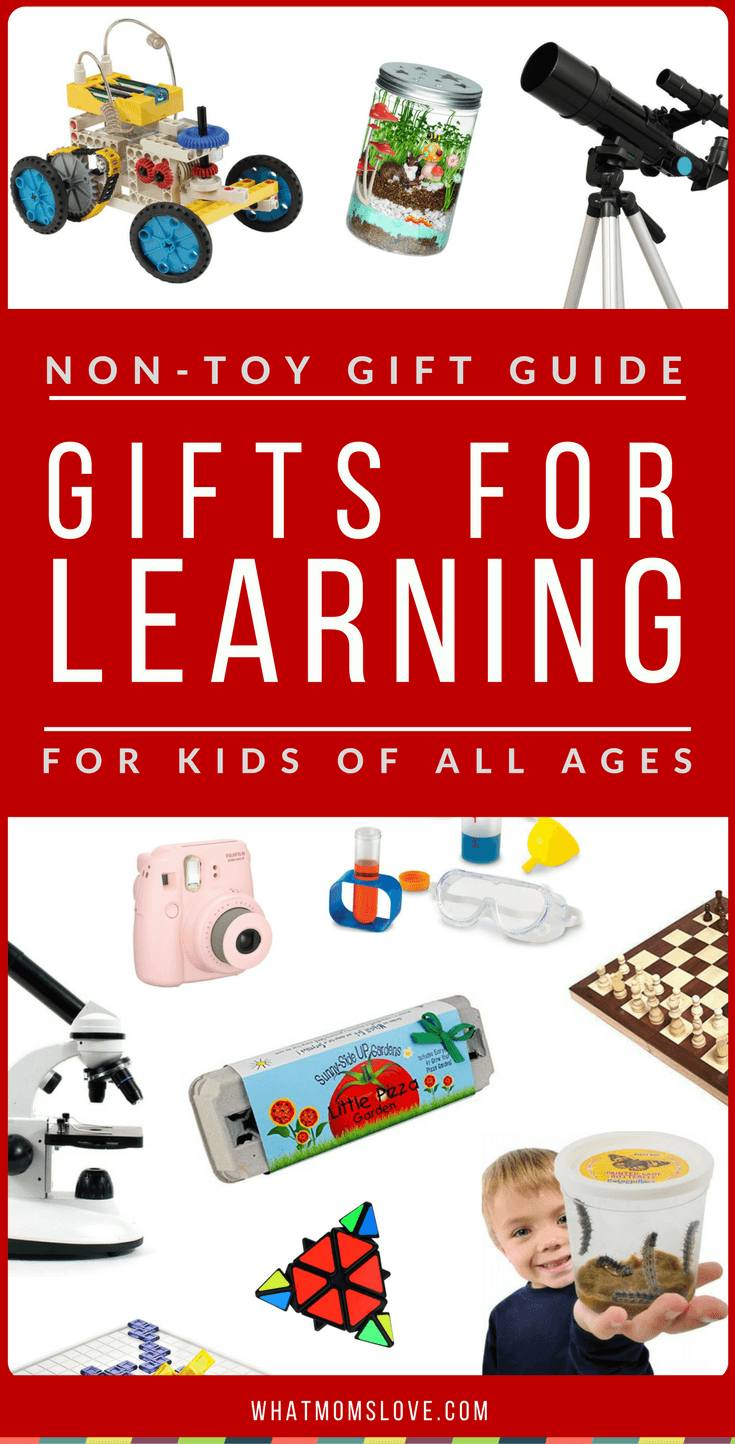 Best Non-Toy Gift Guide - Educational / Learning Gifts